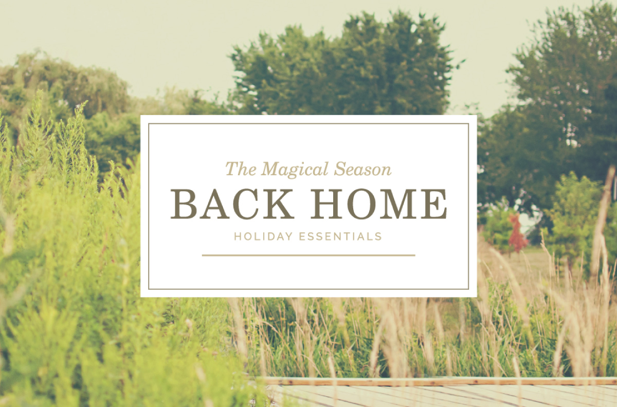 back-home-gamboa1